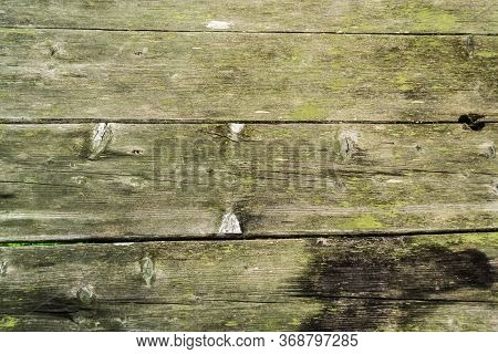 The Old Wood Texture. Timber Surface In Green Colors, Pattern, Background.