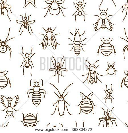 Insects Seamless Pattern. Summer Fashion. Fabric Wallpaper Print Texture. Editable Vector Illustrati