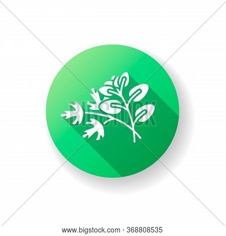 Fresh Herbs Green Flat Design Long Shadow Glyph Icon. Scented Fresh Vegetable. Italian Nutrient Cond