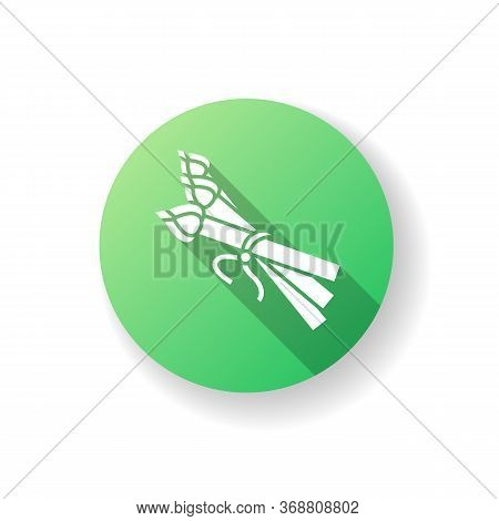 Asparagus Green Flat Design Long Shadow Glyph Icon. Fresh Raw Vegetable For Fitness Dieting. Veggie