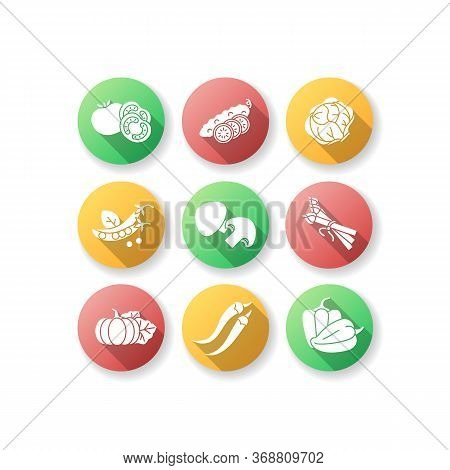 Veggie Flat Design Long Shadow Glyph Icons Set. Sliced Cucumber. Fresh Tomato To Prepare Ketchup. Pe