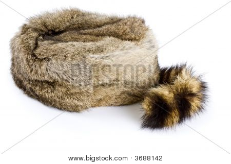 A hat made with rabbit and raccoon fur isolated on white. poster