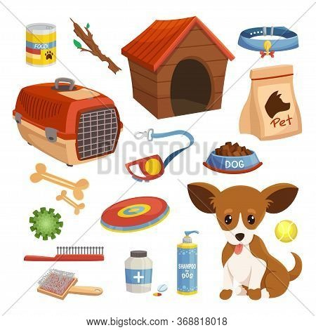 Dog Food, Accessories, Toys Set. Puppy, Pet Grooming, Caring, Keeping Products.
