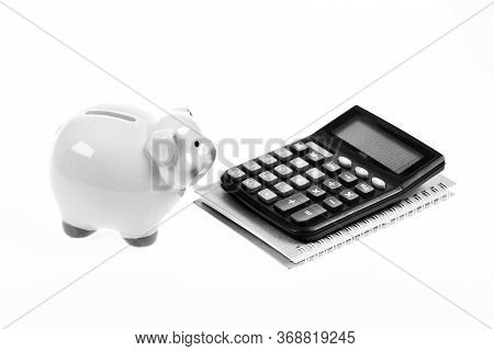 Piggy Bank Money Savings. Economics And Profit Management. Economics And Finance. Piggy Bank Pink Pi