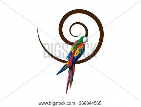 Parrot Logo Idea Design, Beautiful Scarlet Macaw Bird In Natural Color, Vector Illustration Isolated