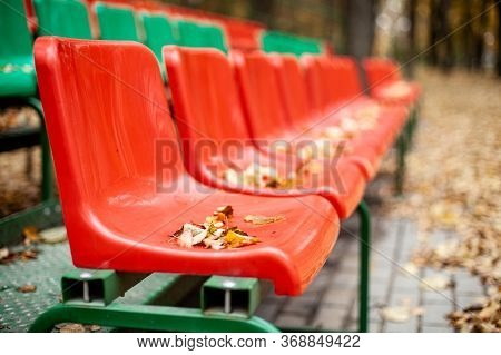 Empty Sports Grandstand In The Leaves In The Fall. Yellow Leaves Lie On A Seat Of A Tribune. Plastic