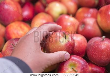 Close Up View Of Fruits Shelf In Supermarket. Hand Taking Red Apples In The Store. Male Hand Taking