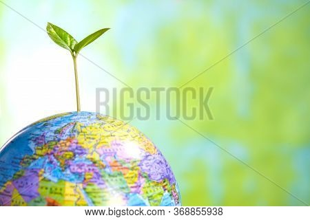 Sprout On The Globe On A Green Background, Updating The Planet, Protecting The Earth