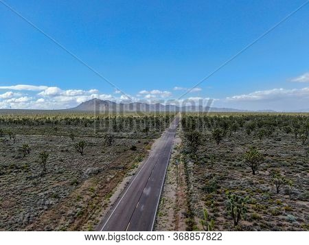 Aerial View Of Endless Desert Straight Dusty Asphalt Road In Joshua Tree Park. Usa. Long Straight Ta