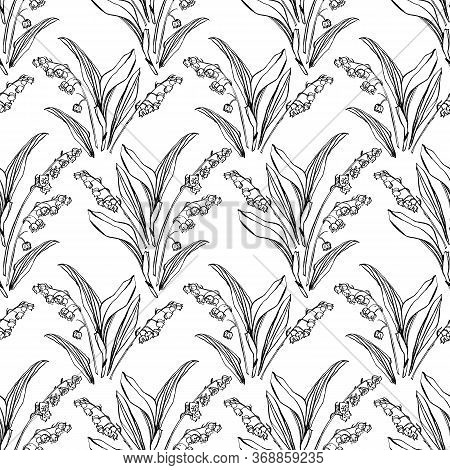 Vector Botany Lily Of The Valley Repeat Pattern, Geometric Elegant Line Art Style With Hand Drawn Ou