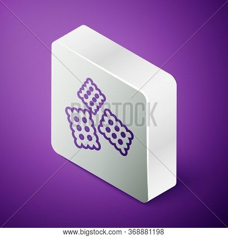 Isometric Line Cracker Biscuit Icon Isolated On Purple Background. Sweet Cookie. Silver Square Butto