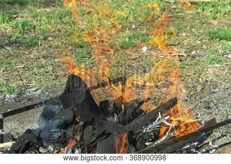 Bonfire. Among The Green Grass, A Bonfire Is Prepared For Grilling. Brightly Orange Flame Of Fire Ov