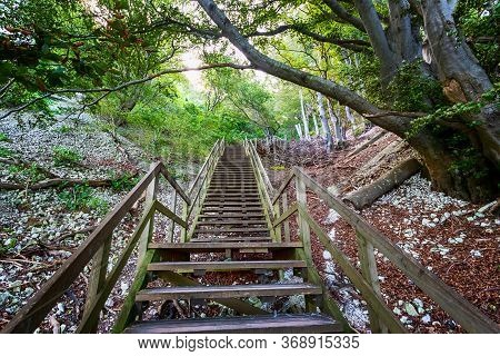 Beautiful Wooden Staircase In A Mountain Forest. Mons Clint. Denmark.travels.
