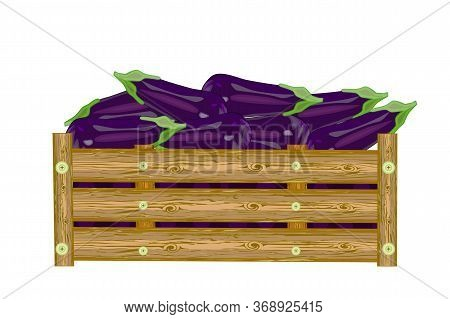 Eggplants In Wooden Box Isolated On White Background. Crate Of Fresh Aubergine. Eco Farm, Market, Tr