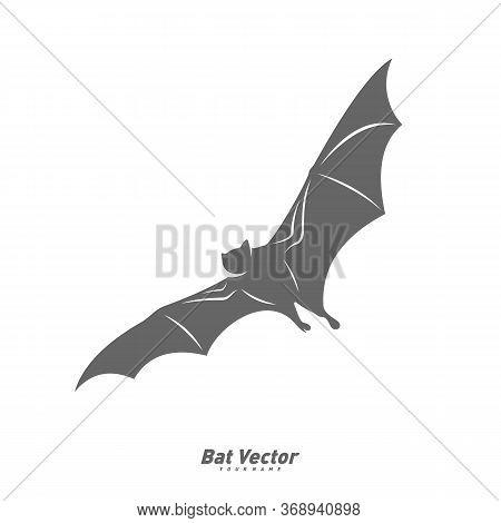 Bat Logo Vector Template. Silhouette Of Bat Design Illustration