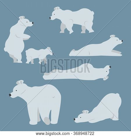 Set Of Adult Polar Bears And Their Young Cubs In Various Poses. Northern Animals. Vector Cartoon Fla