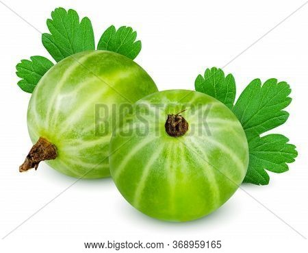 Isolated Gooseberry. Two Green Gooseberries With Leaf Isolated On White Background With Clipping Pat