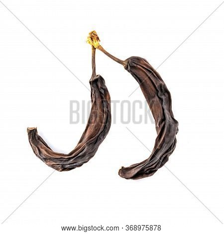 Two Old Dried Bananas, Dried, Isolated On A White Background. Spoiled Fruit.