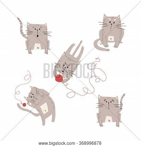 Funny Cat Set In Various Mood And Pastime, Playing With Knitting Ball, Sitting And Thinking, Crying,