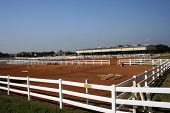Equestrian center for boarding and training horses. poster