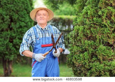 Man trimming a fence in a garden poster