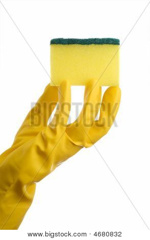 Yellow Cleaning Sponge And Hand
