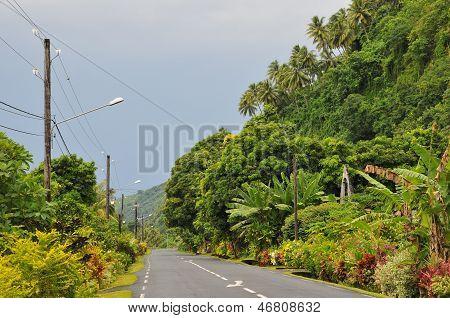 Tahitian road