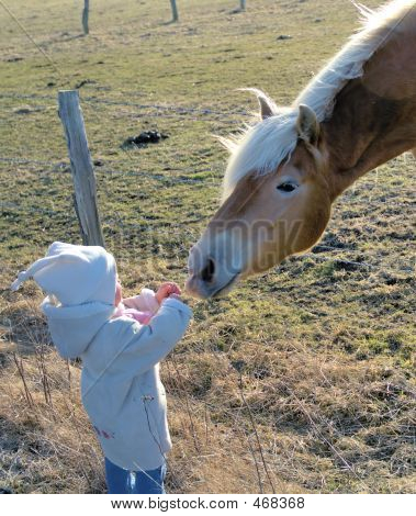 Child And Horse