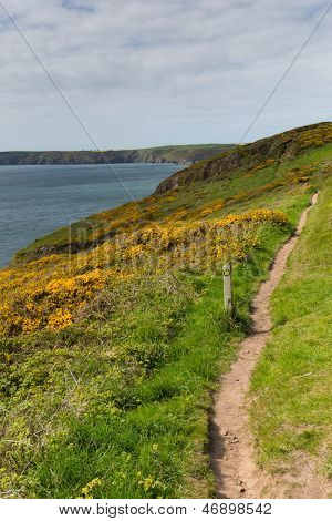 Pembrokeshire coast towards Newgale and Rickets Head St Brides Bay Wales from Nolton Haven.    In the Pembrokeshire Coast National Park.  A few miles from Haverfordwest poster