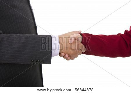 Handshake Of Business Partners, Men And Women In The Office