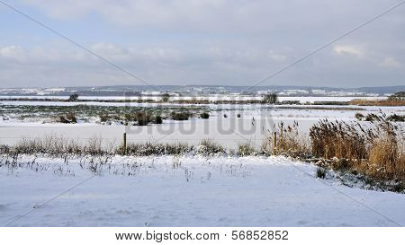 Snow on the Dumbles