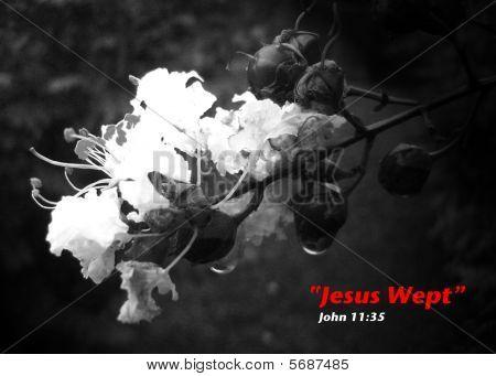 Symbolic Jesus Weeping John 11:35