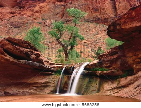 Little waterfal in Grand Canyon