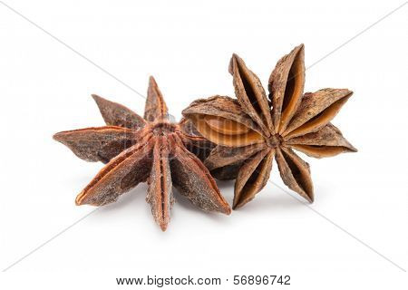 Anise stars on a white background