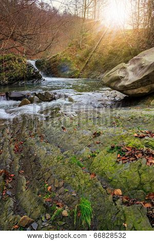 Forest River With Stones And Moss In Sun Light