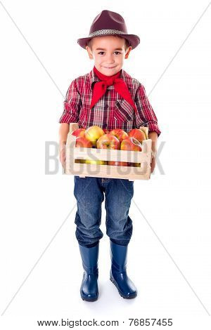 Little Agriculturist Boy Holding Apples In Crate