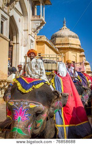 JAIPUR, INDIA - NOVEMBER, 28: Elephant riders in the Amber Fort near Jaipur, Rajasthan, India on November 28, 2012.