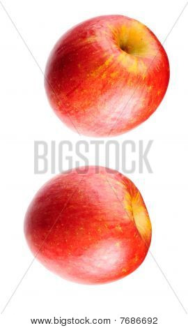 Pair of cox's orange pippin apples isolated on white poster