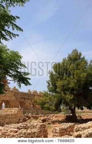 Ruins of crusaders castle, Tel Afek National Park, Israel poster