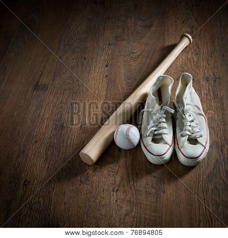 Baseball Player Equipment