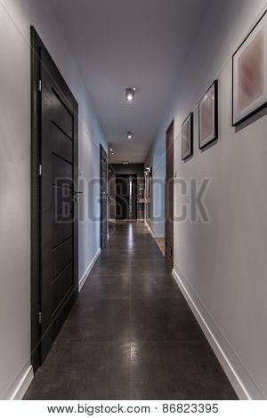 Elegant Grey Interior