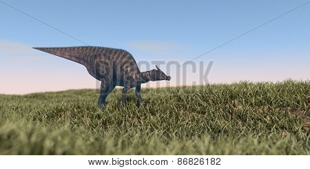 saurolophus dinosaurus grazing in grass field