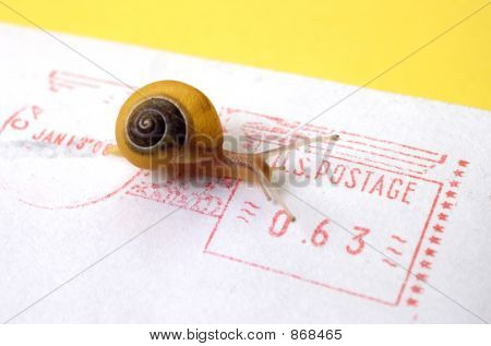 Snail Mail Postage
