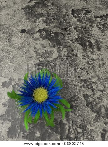 Stamina, Mental And Physical Strength Concept With Flower Growing On Desert