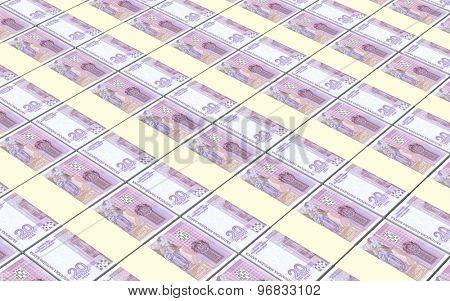 Bulgarian lev bills stacks background.