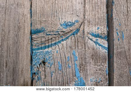 Close up of obsolete wooden surface with remains of blue paint texture background