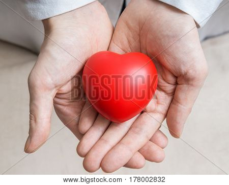 Heart Transplantation Concept. Doctor Holds Red Heart In Hands.