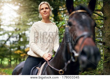 Lady Riding Brown Horse In Park
