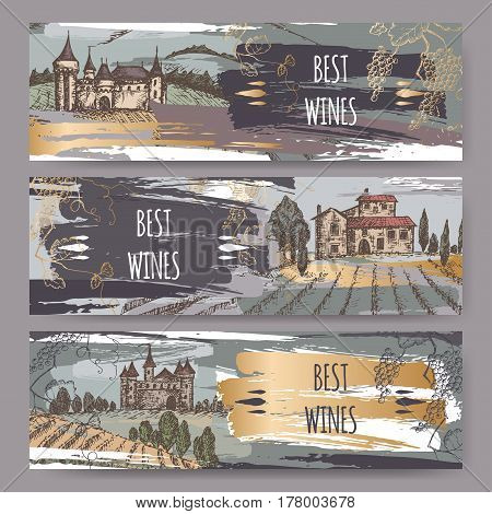 Set of three color original wine label templates with castles, vineyard landscapes and grapevine. Great for winery ads, banners, brochures, labels.