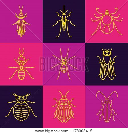 Insect line icon set made in trendy line art style on multicolored background. It can be used for web and mobile applications by exterminator service companies. Vector illustration.
